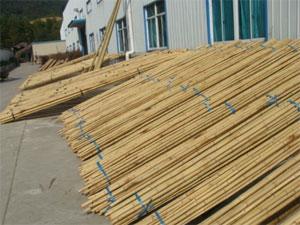 Bambusové tyče praha